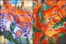 পশ্চিমবঙ্গের বিধান সভা নির্বাচন: ঘাসফুল  না পদ্মফুল